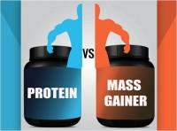 гейнер или протеин